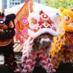 Nouvel An Chinois le 25 janvier 2020  农历新年